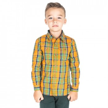 Cherry Crumble California Casual Wear Checkered Shirt