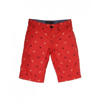 Indian Terrain Boys Casual Wear Printed Shorts