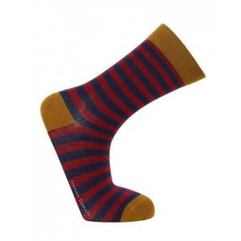 Indian Terrain Casual Wear Striped Men Socks