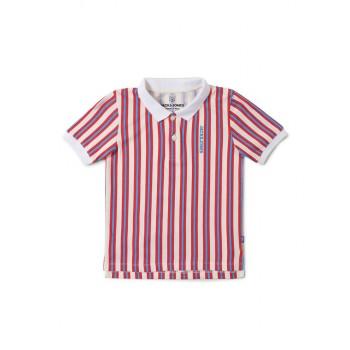 Jack & Jones Junior Multicolor T-Shirt For Boys