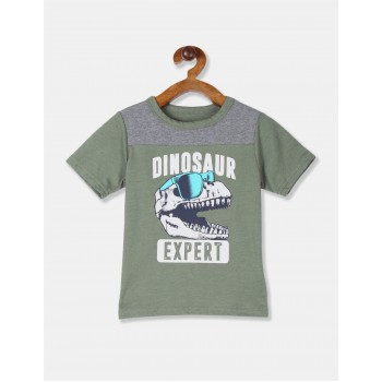 The Children's Place Toddler Boy Green Cut And Sew Panel Graphic T-Shirt