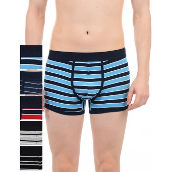 U.S. Polo Assn. Men Striped Trunk