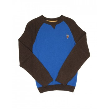 U.S. Polo Assn. Casual Wear Solid Boys Sweater